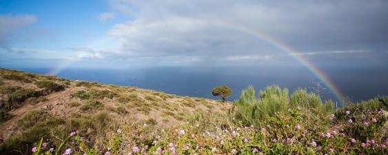 Regenbogen 1