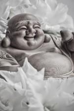Smiling Buudha